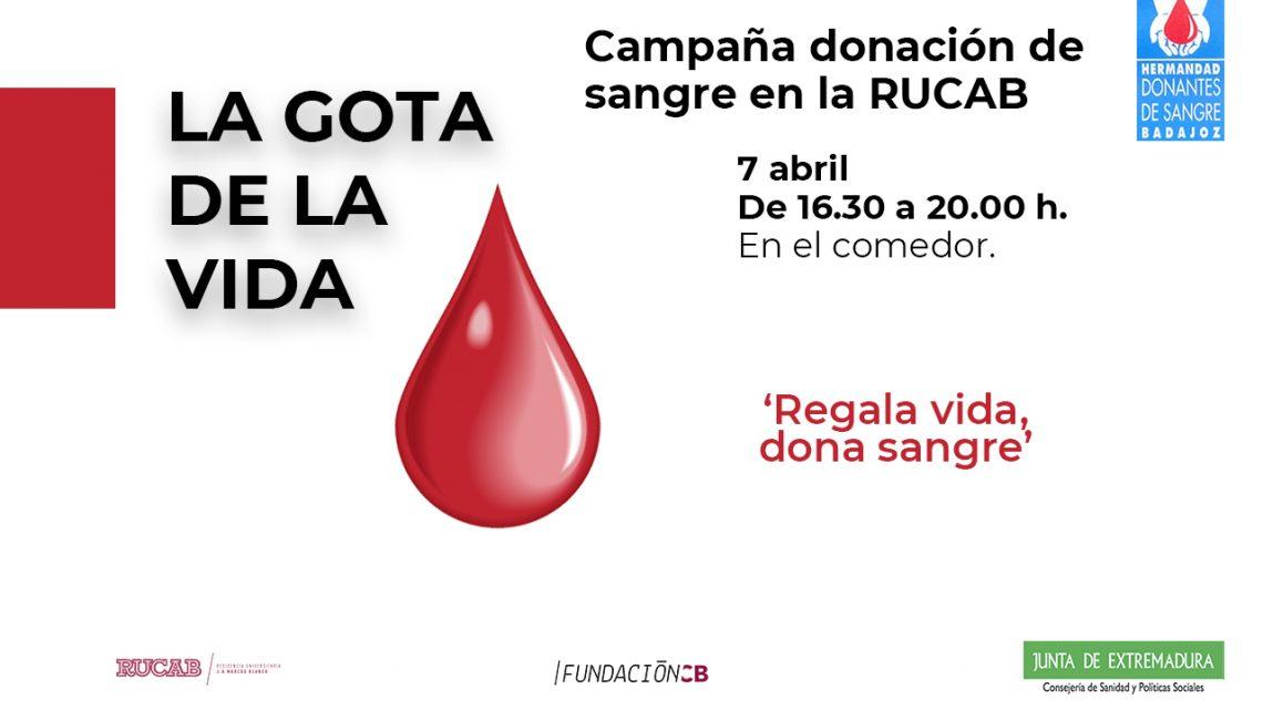 Campaña donación de sangre en la RUCAB